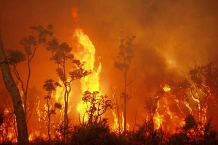 Αυστραλία – φωτιές: Ένα κλιματικόάλμα