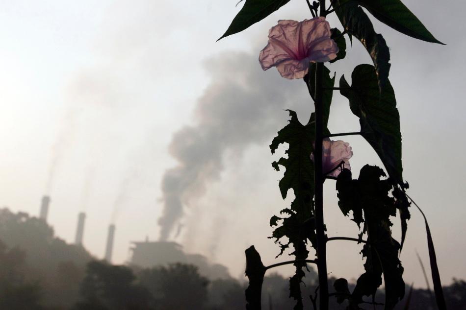 13 θέσεις για την οικολογικήκαταστροφή