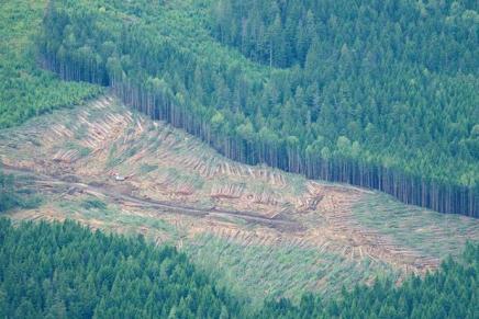 Πανδημία και οικολογικήκρίση